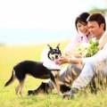離婚から復縁した夫婦の5つの心理